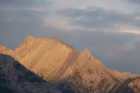 Alberta, 2008