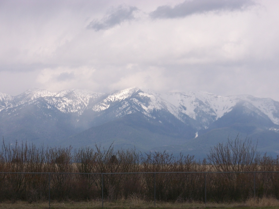 Montana is so beautiful, it hurts.