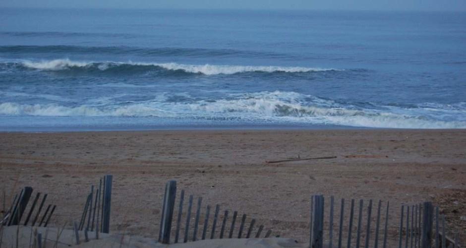 sandy beach wave