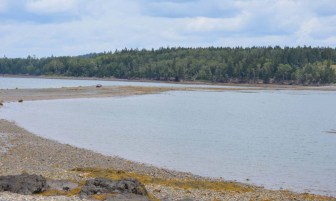 Minister's Island can be accessed once a day, at low tide, by driving, walking or cycling one kilometre over the ocean floor.