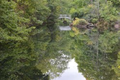 Melani and I swam in this little pond back when we were teens. I'm still cold.