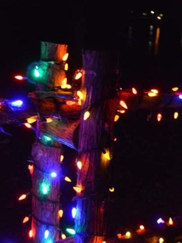 alexandria lights festival (12)