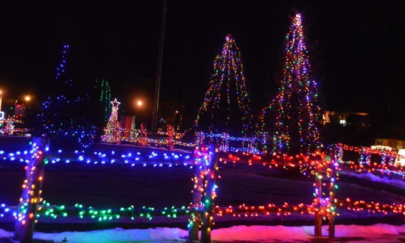 alexandria lights festival (14)