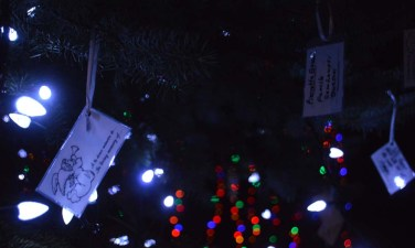 alexandria lights festival (17)