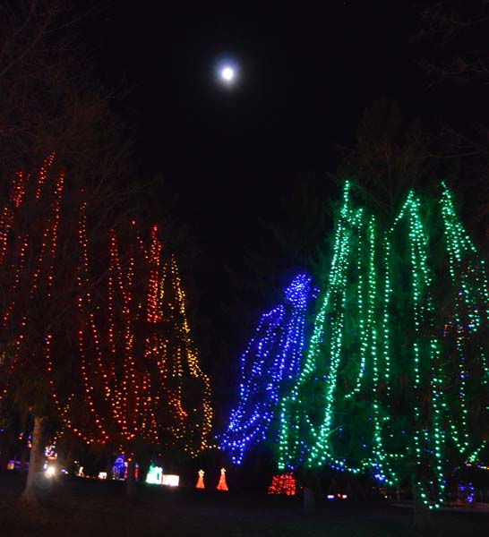 alexandria lights festival (3)
