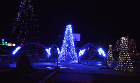 alexandria lights festival (4)