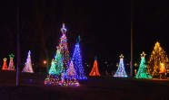 alexandria lights festival (5)