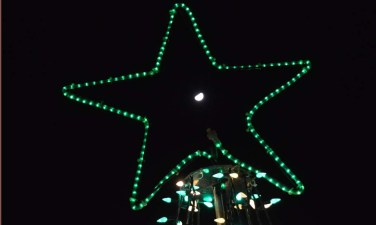 alexandria lights festival (6)