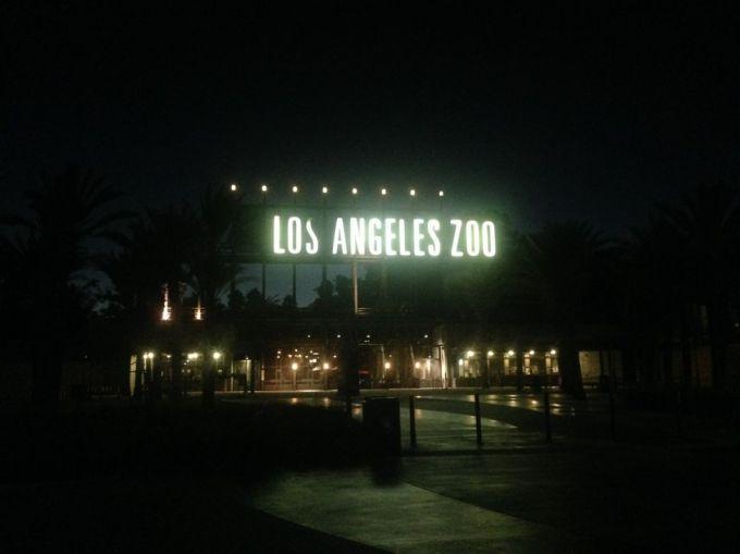 los angeles zoo at night