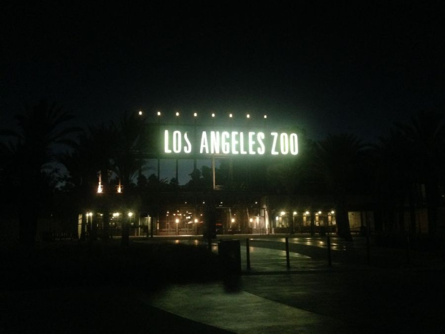los angeles zoo at night