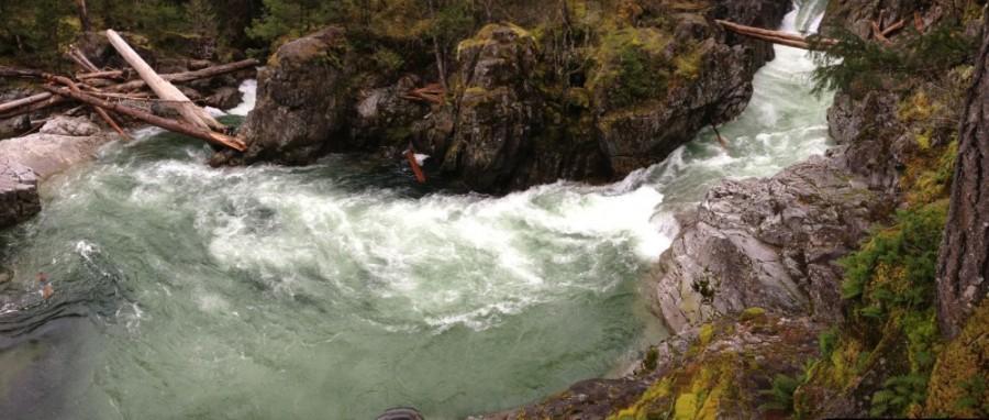 Little Qualicum Falls1