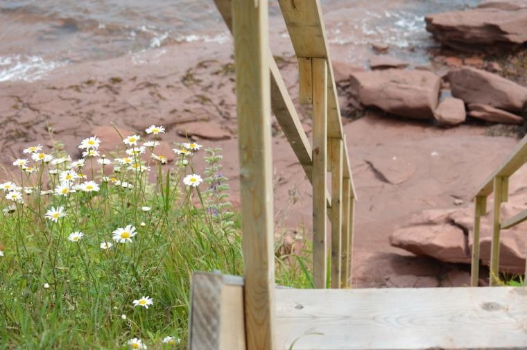 amherst shore nova scotia beach stairs