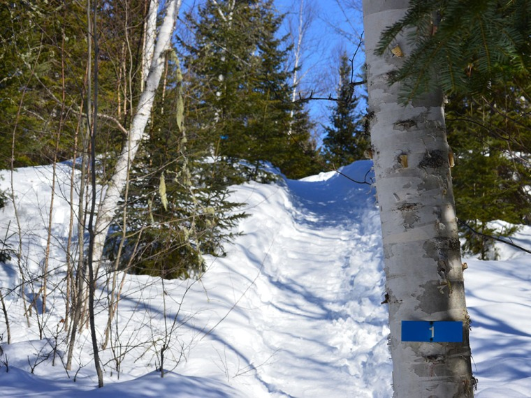 Inside La Mauricie National Park, several trails were open for the season.